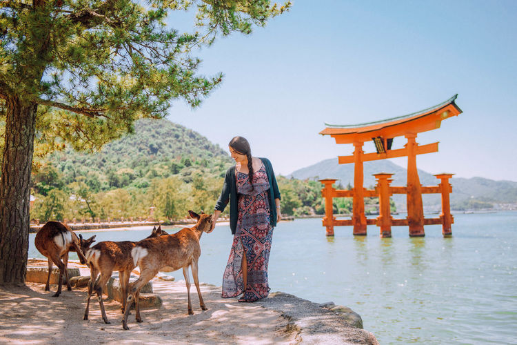 Photo taken in Miyajima, Japan