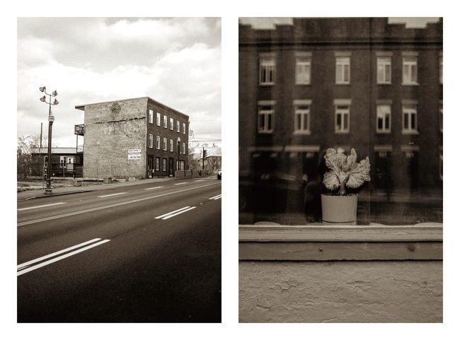 Quebec Blackandwhite Building Exterior Architecture Auto Post Production Filter Built Structure Flower Outdoors Road City Day No People Sky Nature