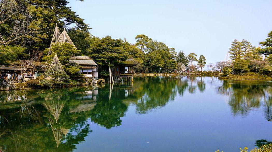兼六園(Kenroku-en)in a sunny winter day. Beauty In Nature Outdoors Reflection Water