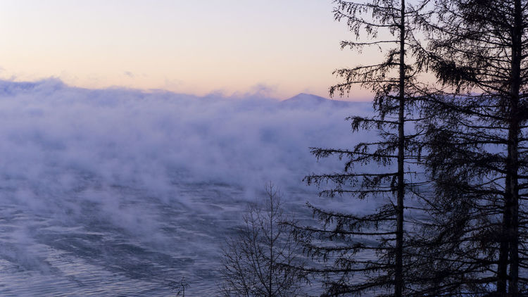 Lake Baikal Lake Picturetokeep_nature Picture_to_keep Arte_of_nature Landscape_captures Sony Nature Fog No People Sunset Outdoors Sky Tree Day Water
