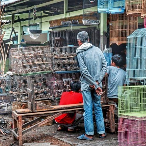 Birds Market Streetphotography Iphonesia Nikon Medan photography