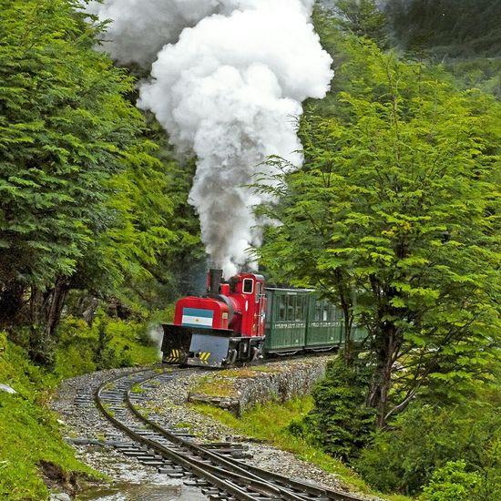 Trencito del Fin del Mundo Ushsuaia Patagonia Argentina Travel Train Beautiful Nature Travel Photography Nature_collection Parque Nacional Tierra Del Fuego World's End Beagle Travelling