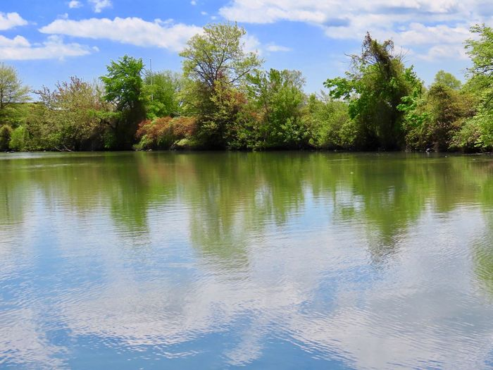 Landscape tranquil scene water reflections green trees blue skies and white fluffy clouds beauty in nature outdoors Idyllic Scenics - Nature