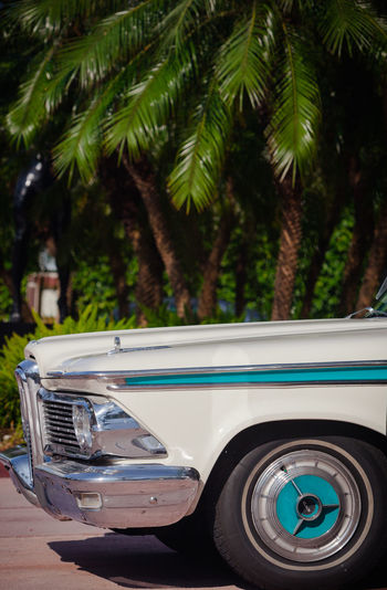 Vintage car on palm trees