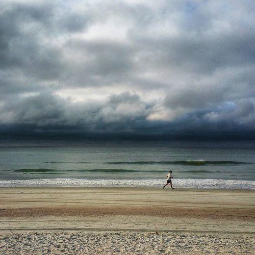 Beachlife Ocean