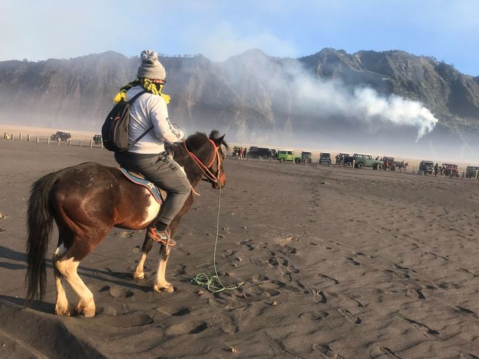 Done That. Riding to the top of mountain in Bromo Indonesia Horse Domestic Animals Horseback Riding Riding Working Animal Men Mammal Mountain Real People Livestock One Animal Day Full Length Lifestyles Jockey Outdoors One Person Leisure Activity Nature Sky