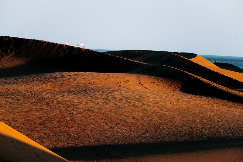 Sky Land Sand Scenics - Nature Sand Dune Sea Beauty In Nature Water Beach Nature Tranquility Clear Sky Tranquil Scene No People Horizon Day Non-urban Scene Desert Climate Arid Climate Horizon Over Water Outdoors