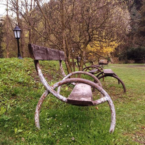 Trees Poland Willa Tadeusz Lanckorona Foog Rainy Day Looking For Spring Bench EyeEmNewHere Plant Tree Grass No People Field Nature Land Day Growth Park Metal Seat Absence Outdoors Green Color Tranquility Park - Man Made Space Branch Autumn Rusty