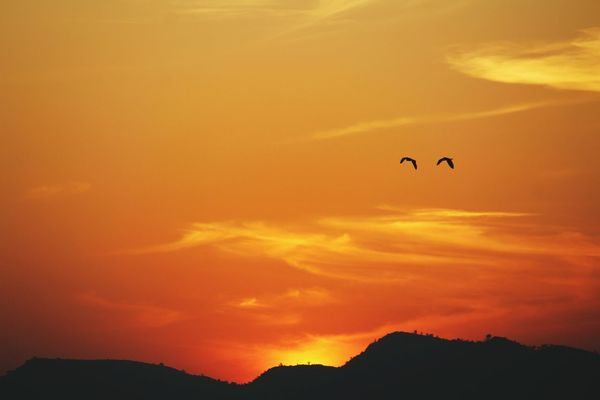 splendid ... WarmGlow Sunset Birds Sky Hills Wanderlust India GypsySoul