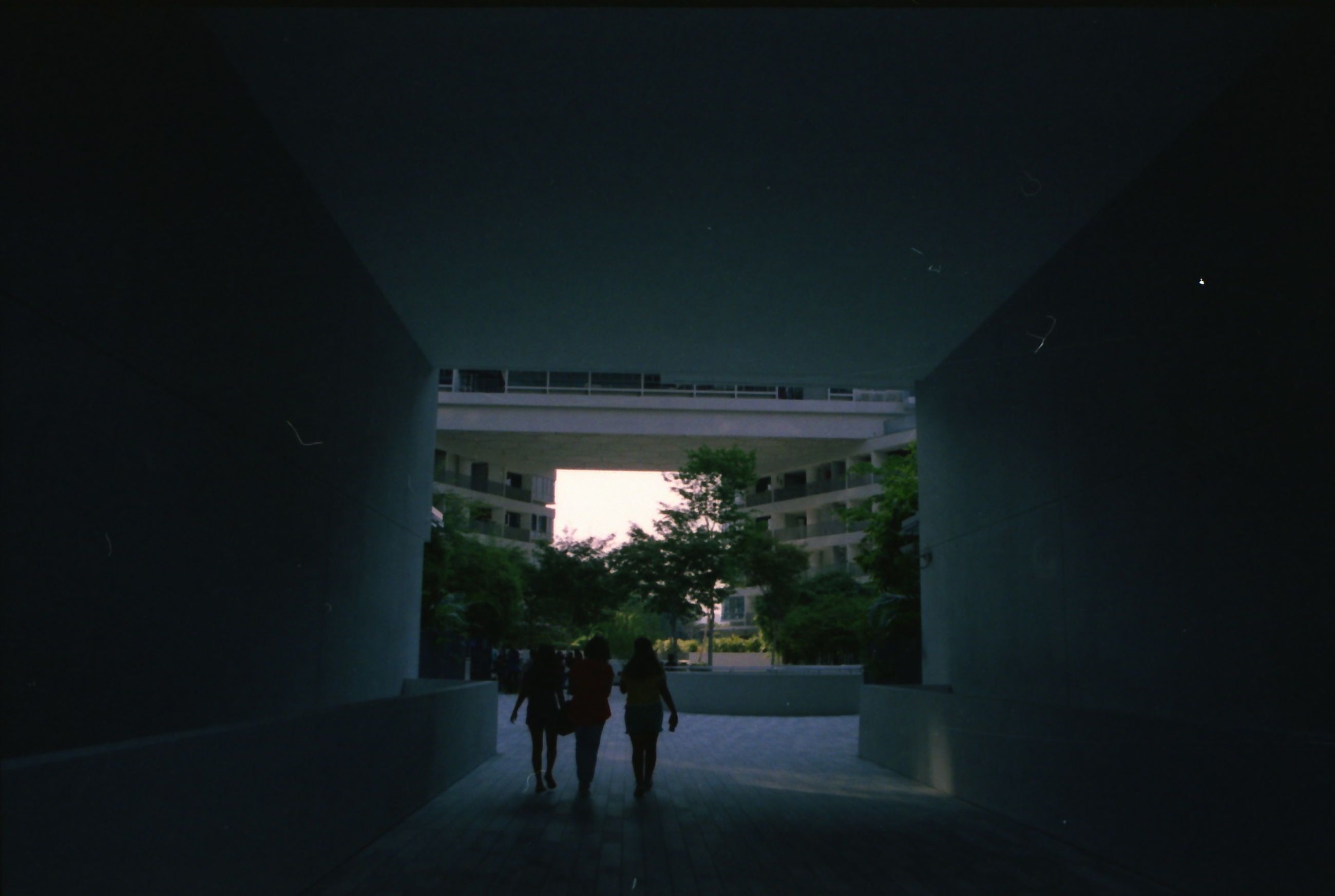 real people, architecture, lifestyles, night, rear view, built structure, illuminated, two people, men, indoors, silhouette, full length, women, tree, sky, people
