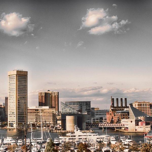 Home City Bornandraised Baltimore City InnerHarbor