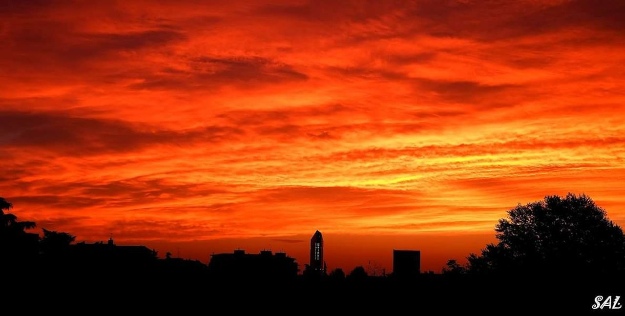 sunset, orange color, built structure, architecture, building exterior, tree, silhouette, sky, no people, skyscraper, city, outdoors, cloud - sky, beauty in nature, growth, nature, modern, urban skyline, cityscape, day