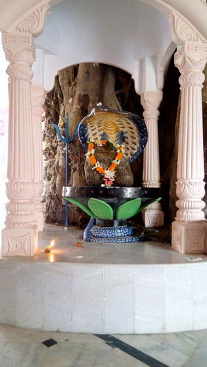 EyeEm Selects Jagannathtemple Mayapur Lord Shivalinga