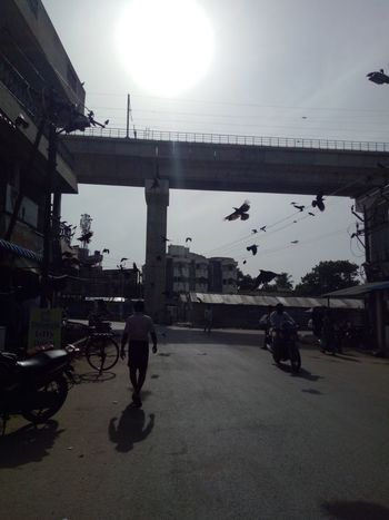 Color Palette Street Photography Nature Sun rises Birds 25and above Flying people Causal walk Taking Photos Alandur Chennai