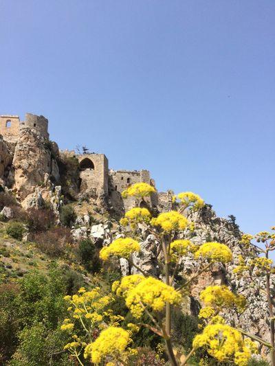 Castle Kale Girne Eski Eserler Ve Müzeler