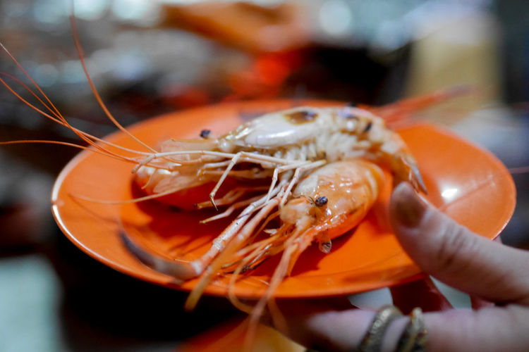 Cropped hand holding plate with seafood