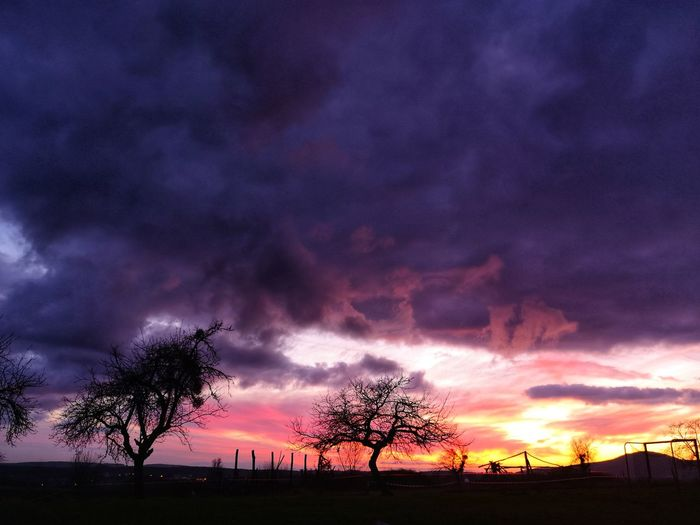 EyeEm EyeEm Best Shots Huawei Huaweiphotography Nature Nature Photography Nature_collection Nightphotography Cityscape #photography Tender Moments Astronomy Tree Sunset Oil Pump Storm Cloud Purple Silhouette Dramatic Sky Galaxy Multi Colored Lightning Power In Nature Romantic Sky