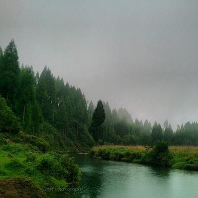Whptakebackflash Whptransparent Whpappreciateearth WHPmamatoldme nature_shots river fishing photography