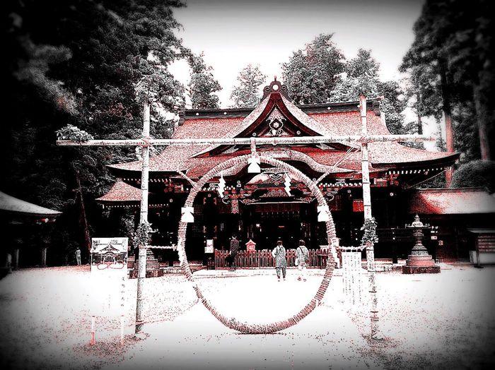 Katori Jinguu Katori Shrine Shrine Shrine Of Japan Katori 千葉県にある香取神宮。この輪をくぐると厄除けになる。Jingu Katori in Chiba prefecture. It becomes amulet when you pass through the wheel.