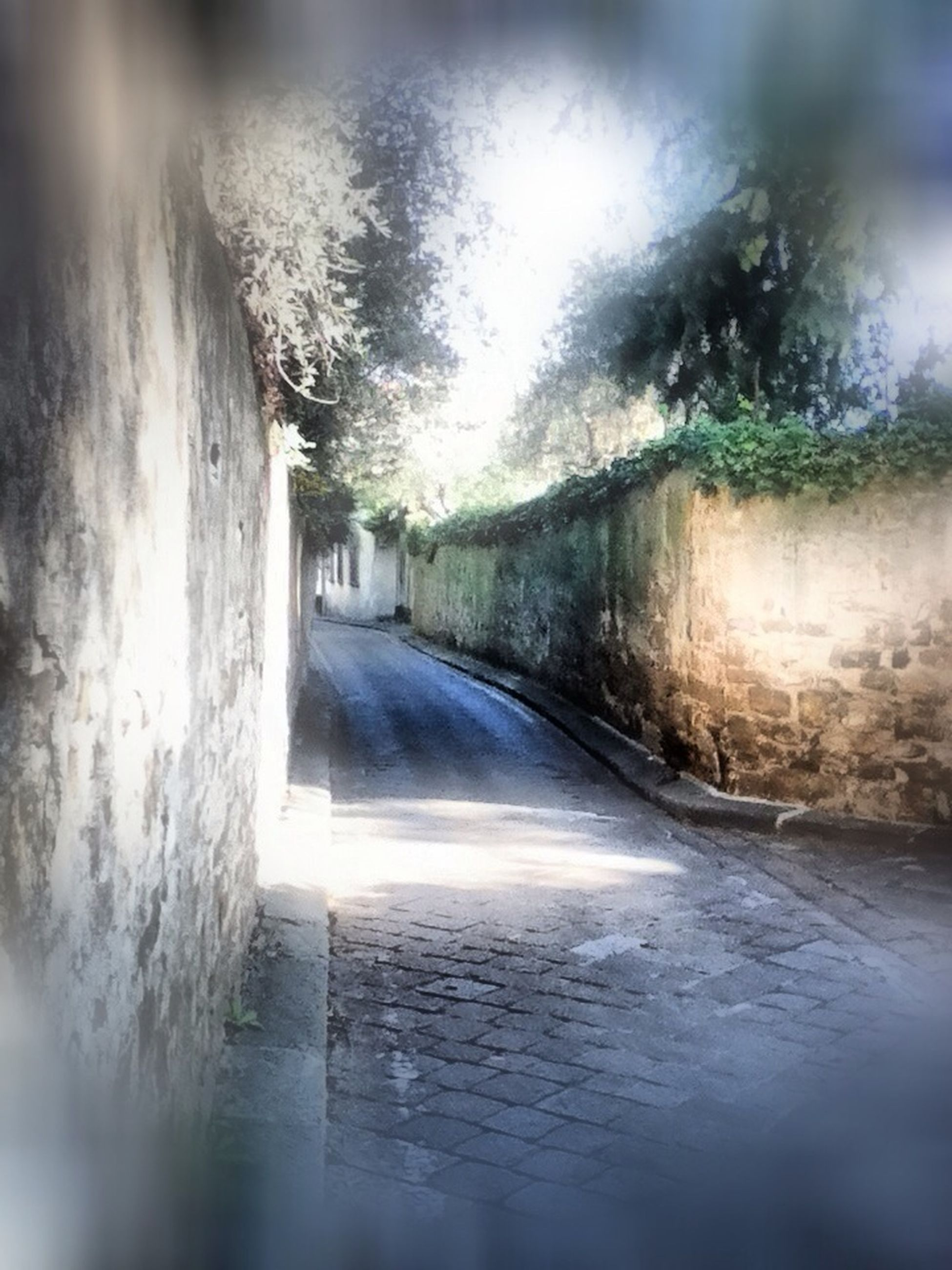 the way forward, water, diminishing perspective, built structure, wet, architecture, narrow, tunnel, vanishing point, indoors, no people, day, reflection, motion, wall - building feature, street, tree, nature, surface level