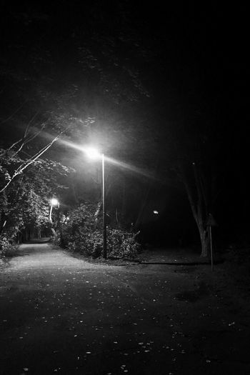 Night Illuminated Outdoors Tree Nature Beauty In Nature Landscape No People Into The Light Into The Darkness Berlin Mitternacht Midnight Blackandwhite Blackandwhite Photography Black And White Photography Pathway Path In Nature