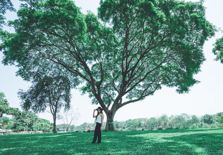 Portrait woman in the garden Asian Woman Loneliness Lonely Portrait Of A Woman Standing Vintage Style Asian Girl Beautiful Woman Big Tree Day Field Garden Grass Green Color In The Garden Lawn Modelgirl One Person Outdoors Plant Portrait Real People Standing Tree Vintage Photo