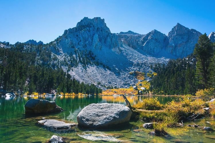 High Sierra Lake Tree Reflection Blue Water Nature Beauty In Nature Mountain Scenics Lake Nautical Vessel Growth Sky No People Outdoors Day Sierra Nevada Mountains Kearsarge Pass California Kings Canyon