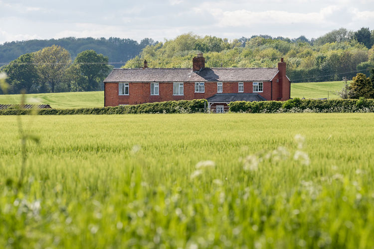 A countryside red brick house stands proud across a field of green maze crops in a green country side setting, Worcestershire, England. Home Houses Agriculture Architecture Building Building Exterior Built Structure Cloud - Sky Countryside Environment Farm Field Grass Green Color Growth House Land Landscape Nature No People Outdoors Plant Rural Scene Sky Tree