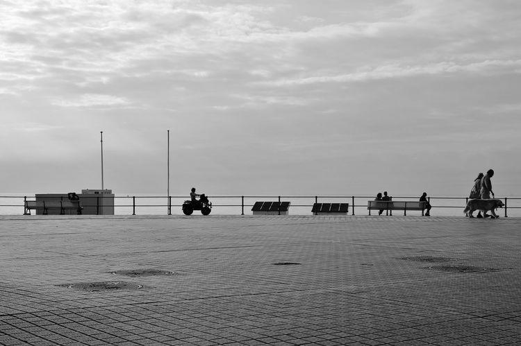 Belgien Cloud Cloud - Sky Cloudy Day Dog Lifestyles Medium Group Of People Ostende Outdoors S/w Sky Strandpromenade