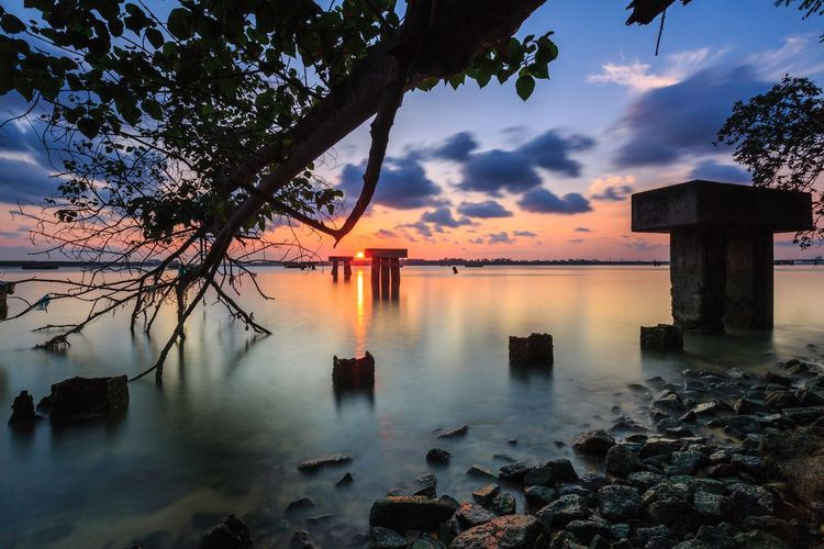 Stunning panorama of abandoned pillar for jetty with sun at centre and calm water sea, mangroove tree reaching to sea water and moving clouds during sunset Sunset Tree Water Nature Tranquil Scene Beauty In Nature Scenics Day Architecture Horizon Over Water Outdoors Branch Built Structure No People Cloud - Sky Sky Tranquility Sea Silhouette