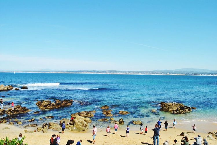 Monterey Monterey Bay Aquarium Monterey CA🇺🇸 Sea Beach Horizon Over Water Large Group Of People Water Blue Nature Beauty In Nature Clear Sky Copy Space Scenics Outdoors Day Vacations Sand Sky Real People Women Wave Men