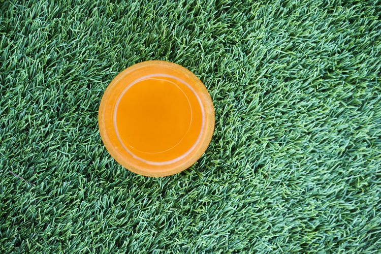 Carrot Juice Close-up Day Drink Food And Drink Freshness Grass Green Color High Angle View No People Outdoors