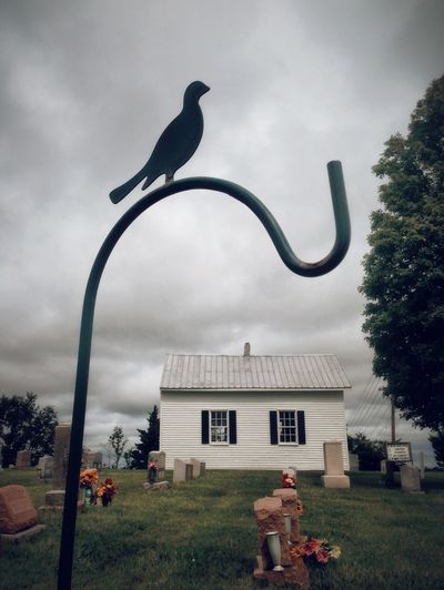 sheperd's hook with dove_cemetery_moscow mills _ mo General Studies Landscape Missouri