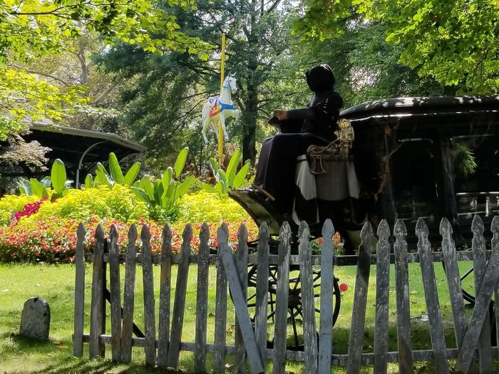 Halloween Coffin Spooky Scary Hearse Graveyard White Fence Pennsylvania West Mifflin Amusement Park Kennywood Scenics LandscapeBeauty In Nature Amusement Park Ride Phantom Fright Nights Park Tranquil Scene Nature No People Tree Carousel Carousel Horse Flower