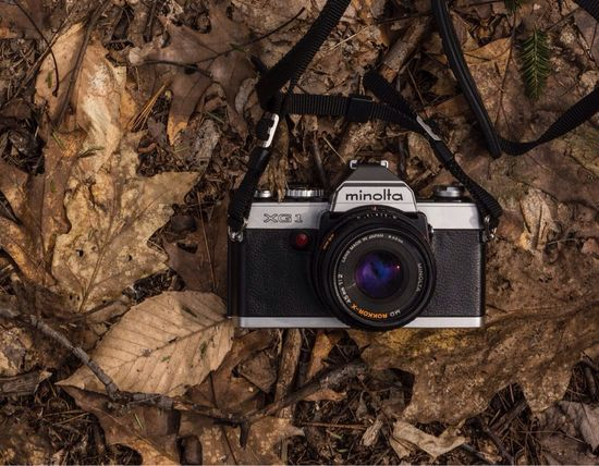 Camera - Photographic Equipment Photography Themes Technology Leaf Outdoors Nature Photographing Minolta Film Camera