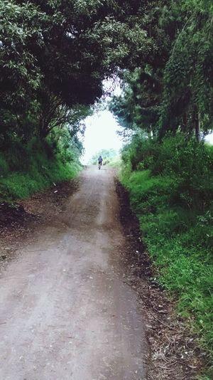 MTB ADVENTURE Mtb Love Nature Caminos