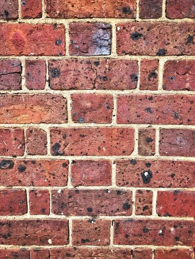 Old brick wall Copy Space Brick Wall Close Up Brick Wall Background Brick Wall Full Frame Backgrounds Brick Pattern Textured  Architecture No People Brick Wall Wall Built Structure Outdoors Wall - Building Feature Design City