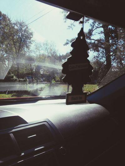 Taking Photos Enjoying Life Relaxing Drive Home