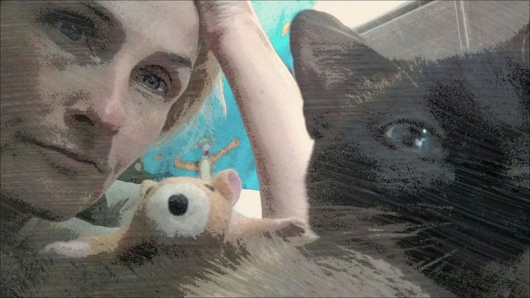 Hanging Out Kitty Selfies Fun With Editing :) Captured Moment Being Silly Silly Kitty Selfieoftheday Up Close And Personal Nooni Feline Kittylove Pets Domestic Cat Check Me Out Domestic Animals Check This Out