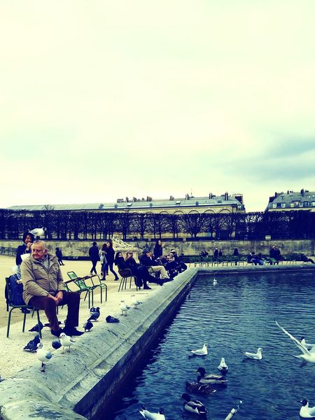 Bird Sky Men People Old Man Bird On Head Outdoors Day Calm Tranquil Scene Paris❤