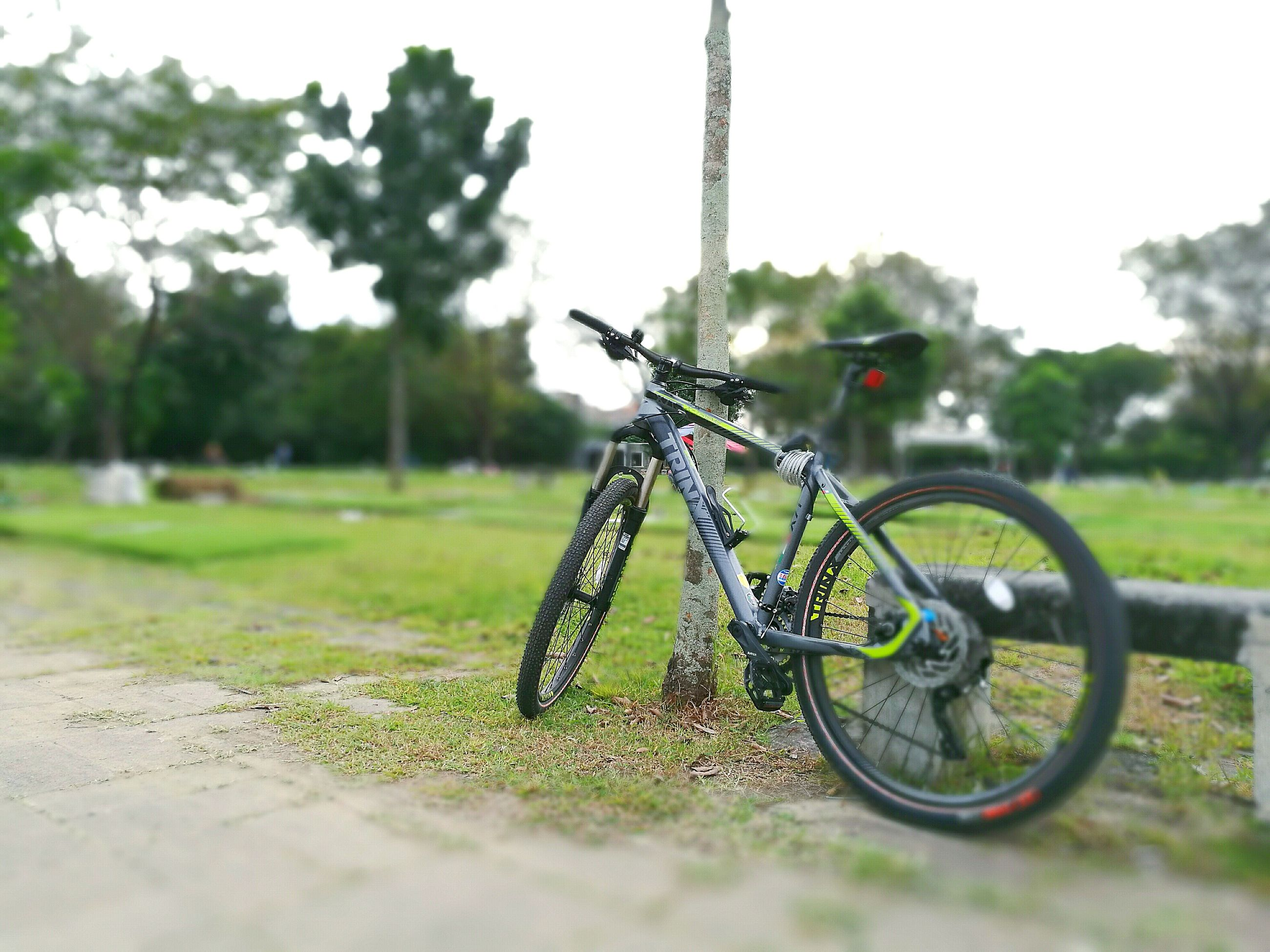 transportation, land vehicle, bicycle, mode of transport, no people, outdoors, grass, day, nature, close-up