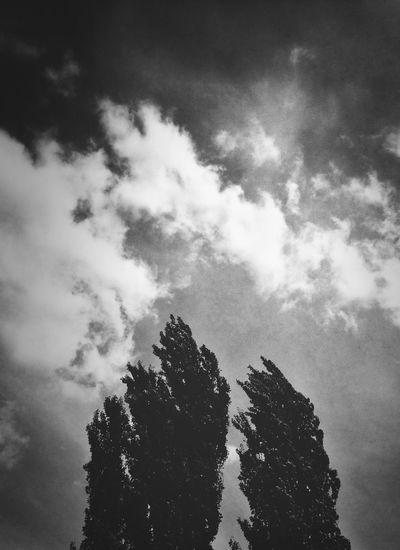 Blackandwhite Clouds And Sky Extremadura ValleDelAmbroz