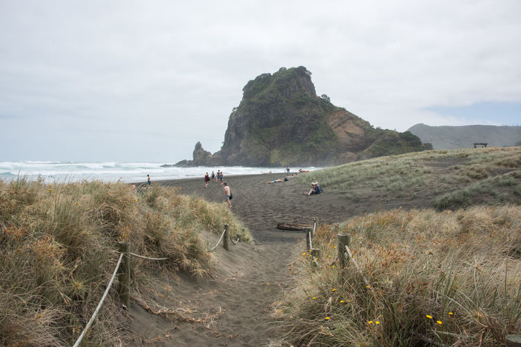 Auckland, New Zealand-December 17,2016: Tourists at Piha Beach with volcanic black sand and Lion Rock in Auckland, New Zealand Auckland Dunes Lion Rock Tasman Sea Tourist Tourist Attraction  Vacations Beach Black Eroded Exploration Geology Grass Group Of People Mountain Nature New Zealand Piha Sand Scenics - Nature Sea Tourism Travel Destinations Volcanic Landscape Volcano