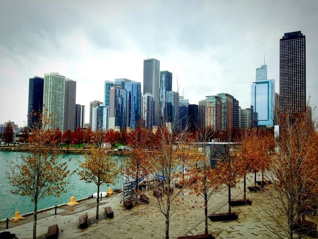 Autum 2015 in a big city! 🍂🍁🏙🍁🍂 Photo taken in Chicago on windy🌾 Thanksgiving day 💚🦃🌸 Architecture Chicago Architecture CityWalk Architecture_collection Urban Architecture Autumn Fall Chicago Skyline Chicago ♥ Lake Michigan Lake Skyline Skyscrapers Cityscapes City Illinois USA USAtrip 🚗🛣🌆