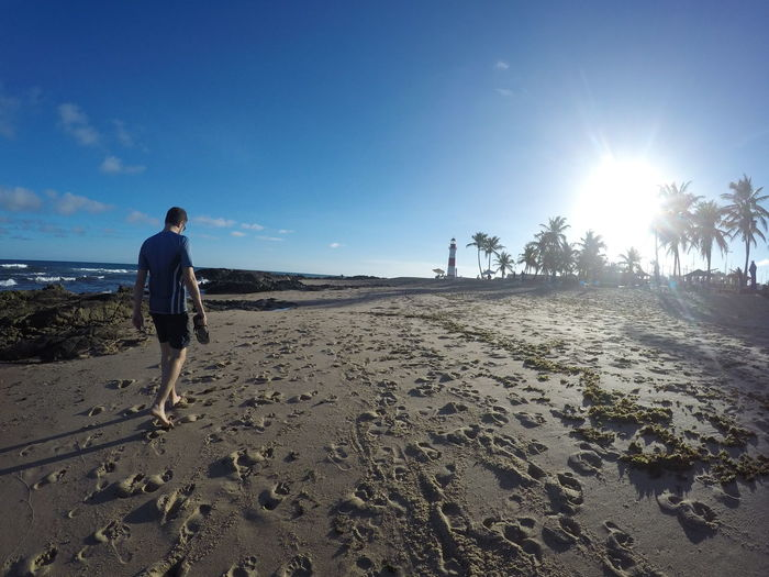 Rear view of man walking at sandy beach during sunny day