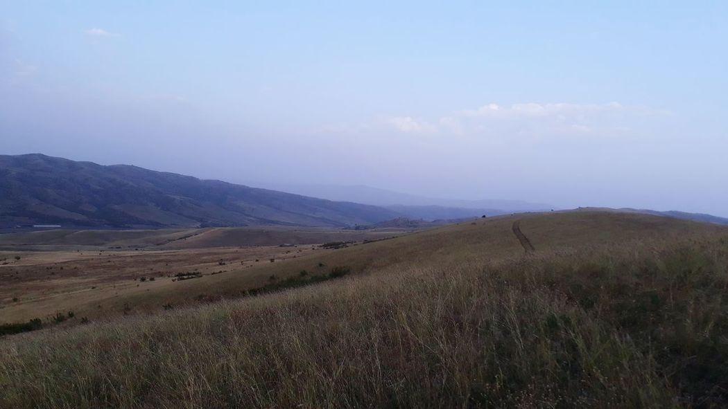 Tree Rural Scene Agriculture Irrigation Equipment Field Hill Plowed Field Sky Landscape Cloud - Sky