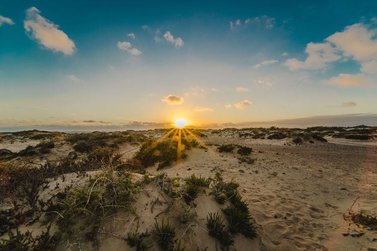 Pic took my favourite island fuerteventura Sunset_collection Landscape_photography Wide Angle Landscape_Collection Landscape Sea Sky Nature Beauty In Nature Beach Scenics Tranquility Sunset Horizon Over Water Sun Tranquil Scene Water Cloud - Sky No People Sand Sunlight Outdoors Day