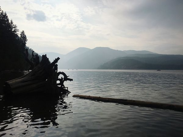 Comox Lake. British Columbia BC, Canada Vancouver Island Island Life Canada Summer Water Driftwood Lake Mountain Nature Tranquility Mountain Range Outdoors Scenics Beauty In Nature
