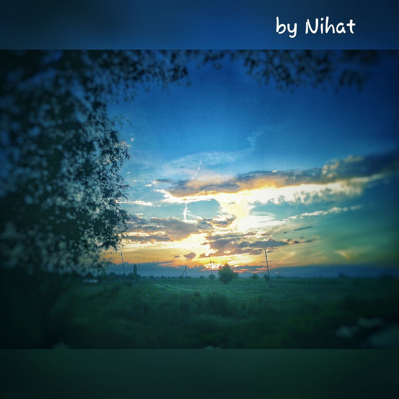 sky, cloud - sky, no people, sunset, nature, scenics, beauty in nature, communication, tree, outdoors, tranquility, blue, day, close-up