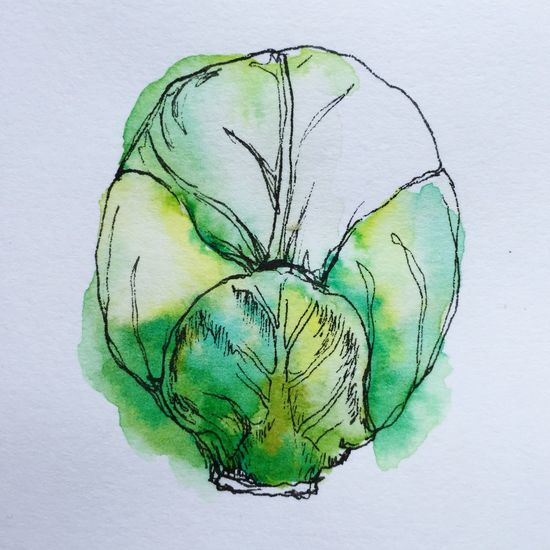 Sprout 🍏 Art ArtWork Artist Art, Drawing, Creativity Illustrator Watercolor Ink Drawing Ink Pen